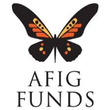 Advanced Finance and Investment Group